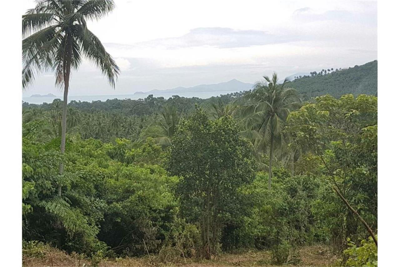 RE/MAX Island Real Estate Agency's Land for sale in Mae Nam, Koh Samui 8