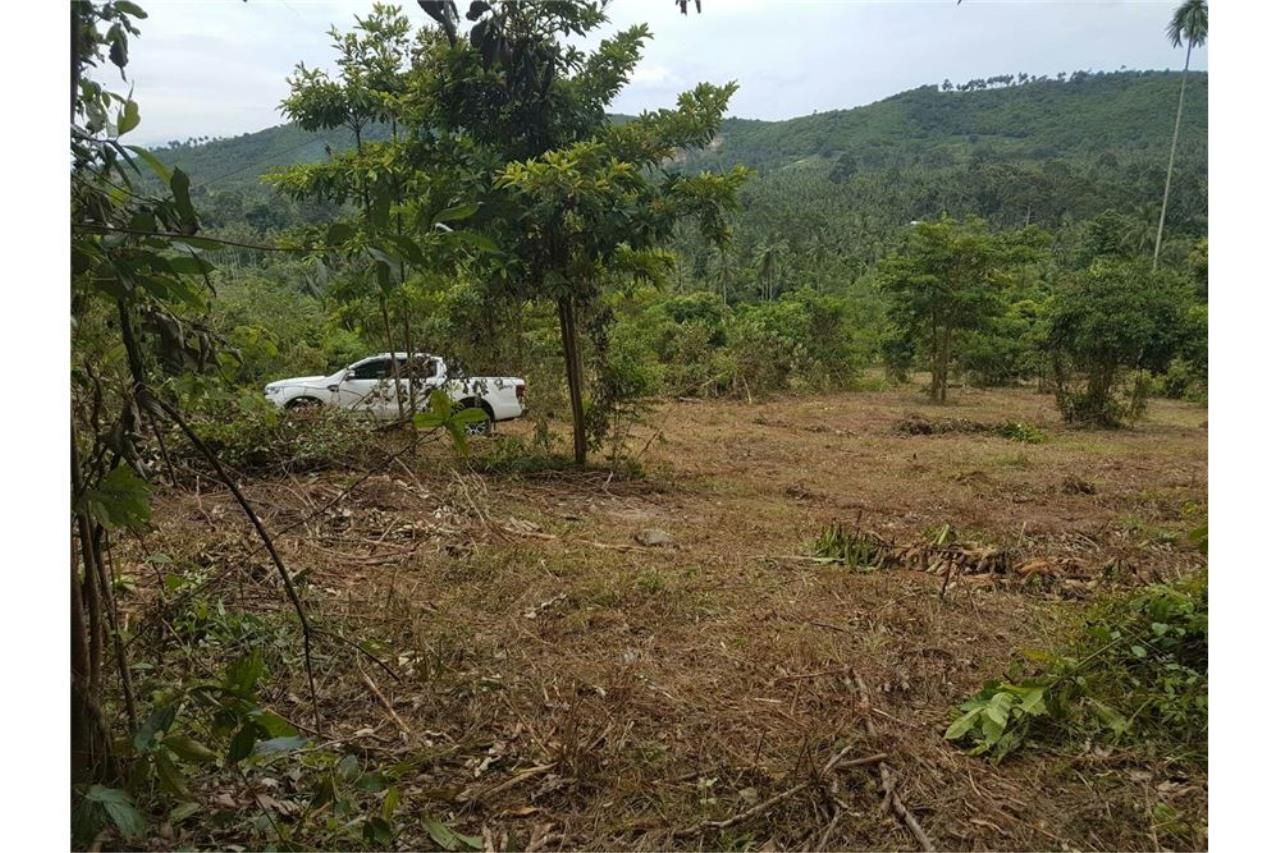 RE/MAX Island Real Estate Agency's Land for sale in Mae Nam, Koh Samui 6