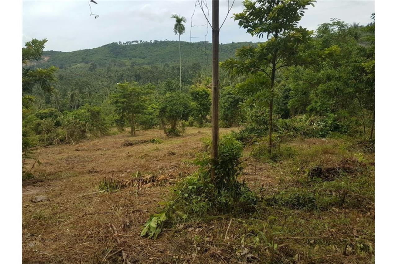 RE/MAX Island Real Estate Agency's Land for sale in Mae Nam, Koh Samui 3