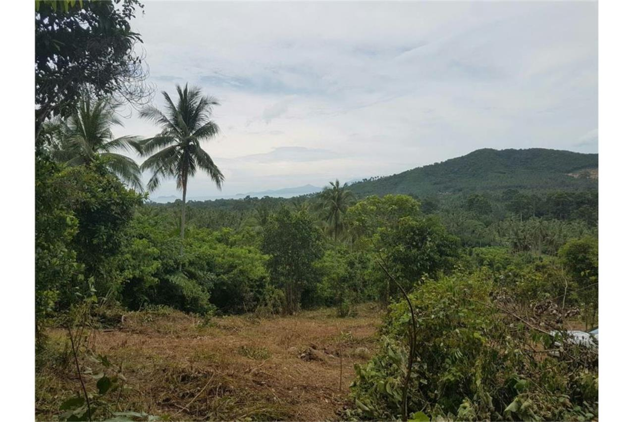RE/MAX Island Real Estate Agency's Land for sale in Mae Nam, Koh Samui 2