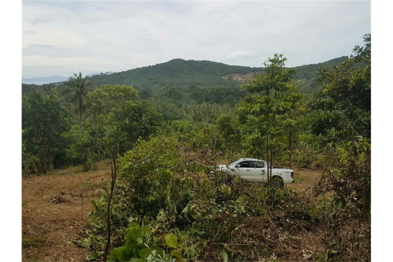 RE/MAX Island Real Estate Agency's Land for sale in Mae Nam, Koh Samui 7