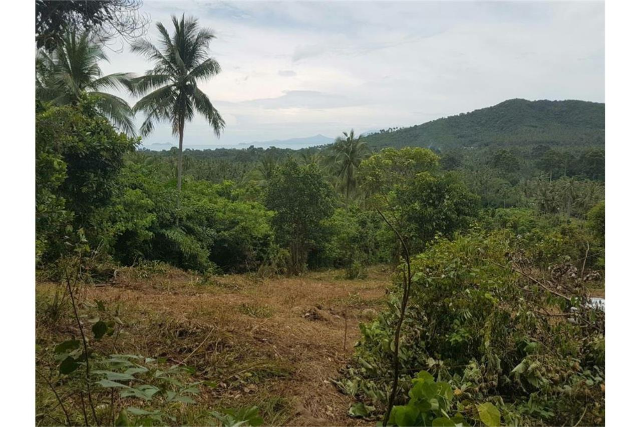 RE/MAX Island Real Estate Agency's Land for sale in Mae Nam, Koh Samui 1