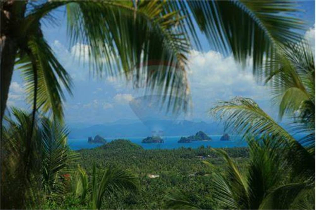 RE/MAX Island Real Estate Agency's Beautiful land for sale in Lipa Noi 11