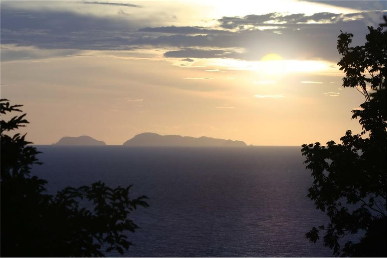 RE/MAX Island Real Estate Agency's Beautiful land for sale in Lipa Noi 18