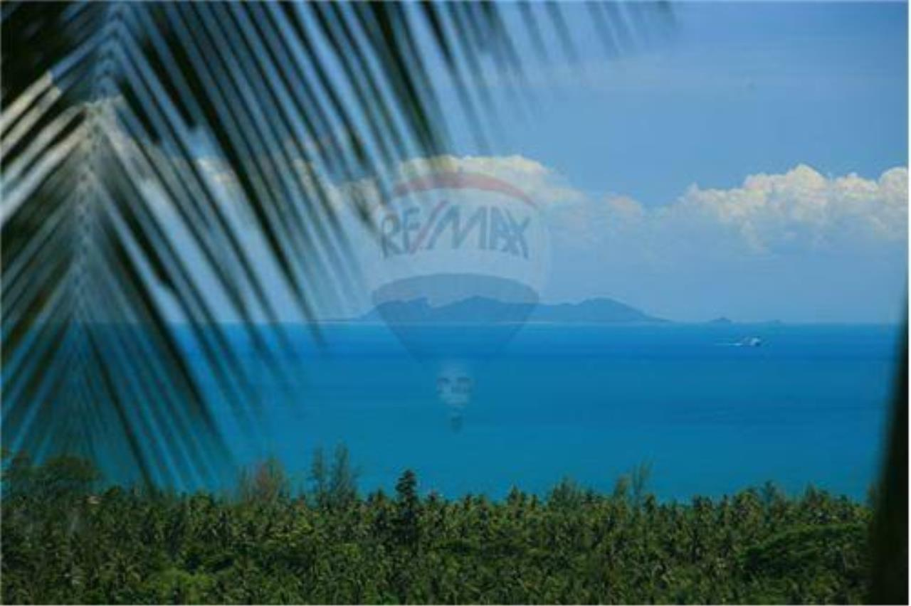RE/MAX Island Real Estate Agency's Beautiful land for sale in Lipa Noi 12