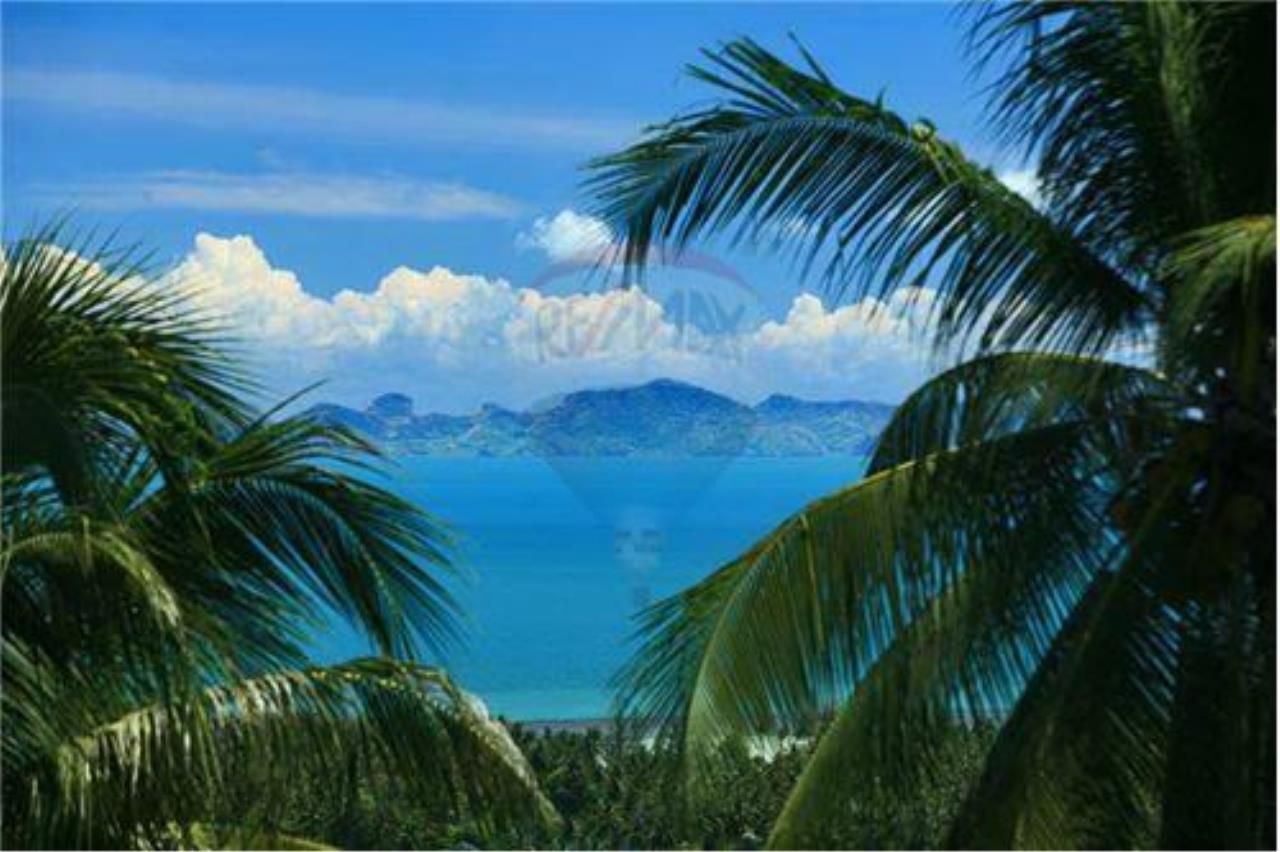 RE/MAX Island Real Estate Agency's Beautiful land for sale in Lipa Noi 15