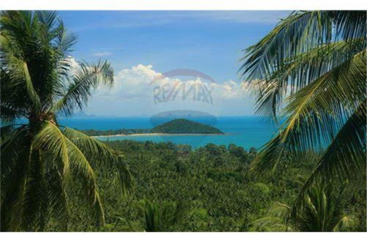 RE/MAX Island Real Estate Agency's Beautiful land for sale in Lipa Noi 13