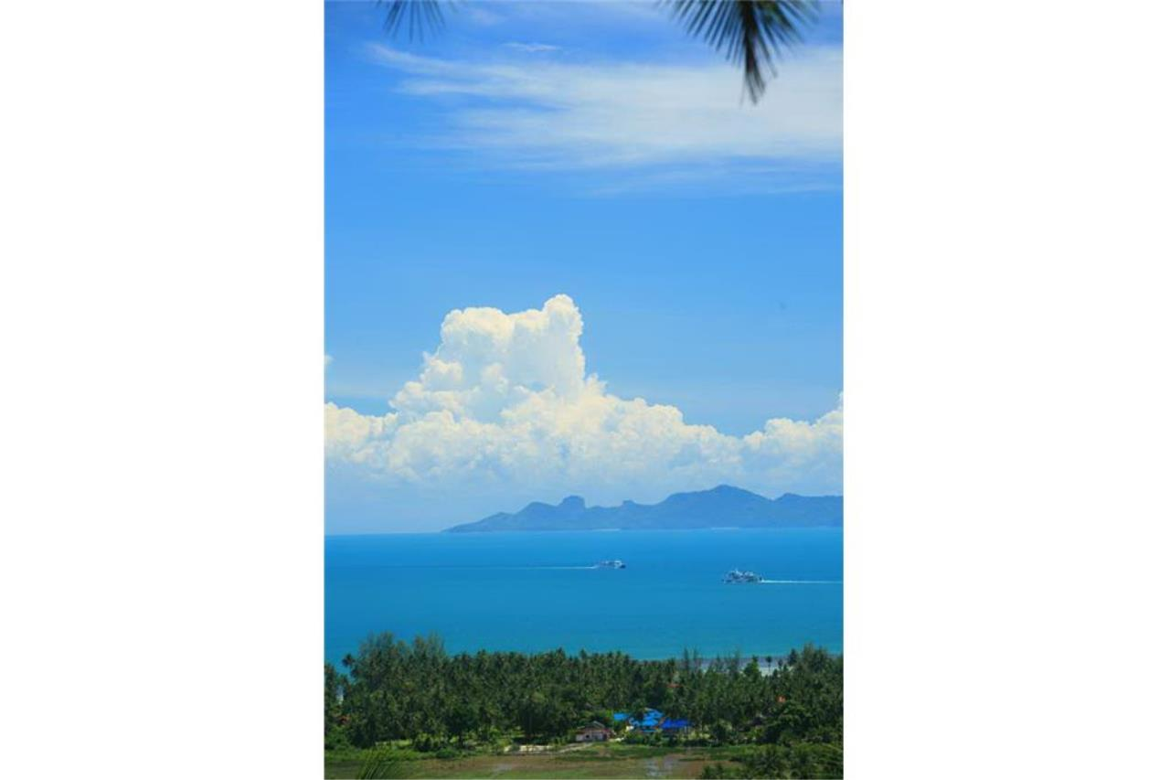 RE/MAX Island Real Estate Agency's Beautiful land for sale in Lipa Noi 5