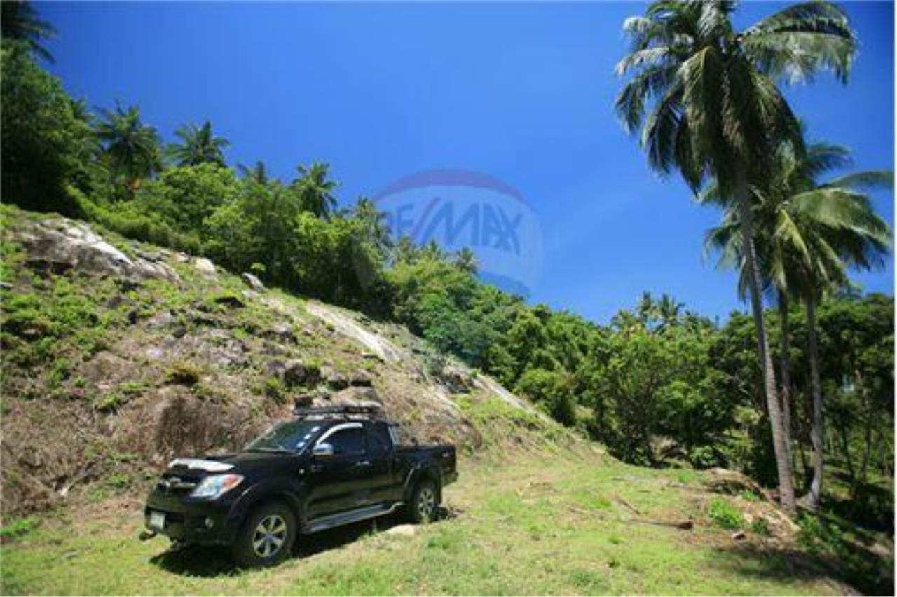 RE/MAX Island Real Estate Agency's Beautiful land for sale in Lipa Noi 7