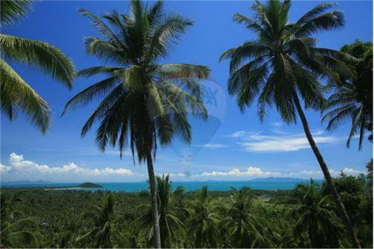 RE/MAX Island Real Estate Agency's Beautiful land for sale in Lipa Noi 9