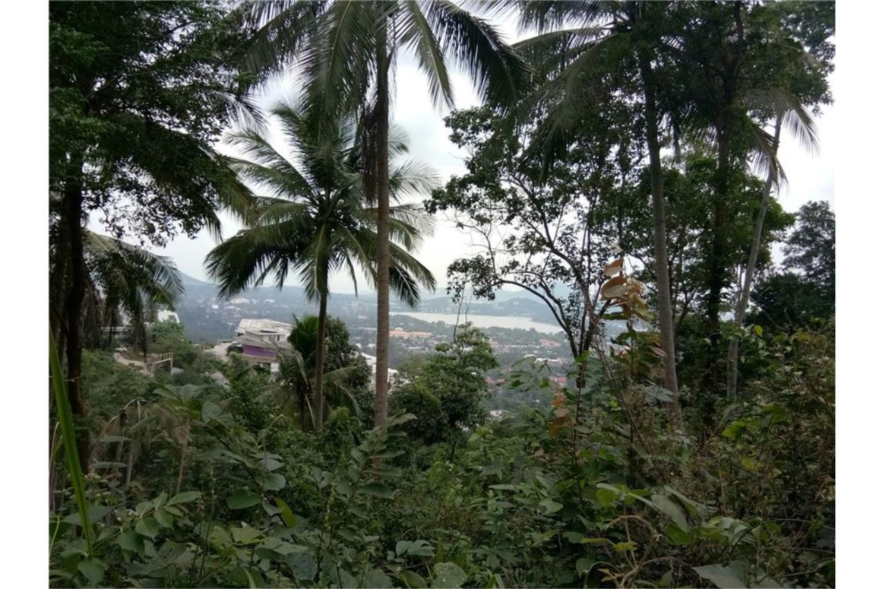 RE/MAX Island Real Estate Agency's Beautiful sea view land for sale in Chaweng 1