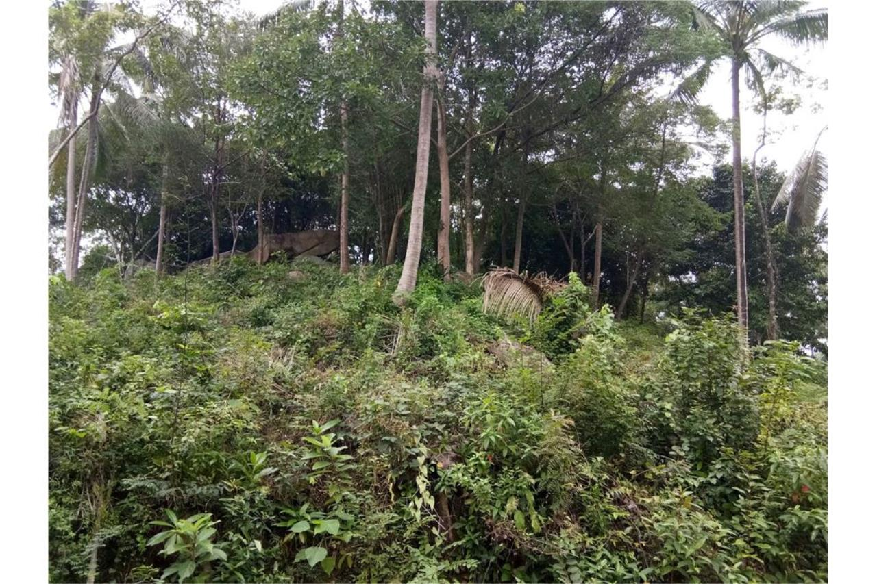 RE/MAX Island Real Estate Agency's Beautiful sea view land for sale in Chaweng 5