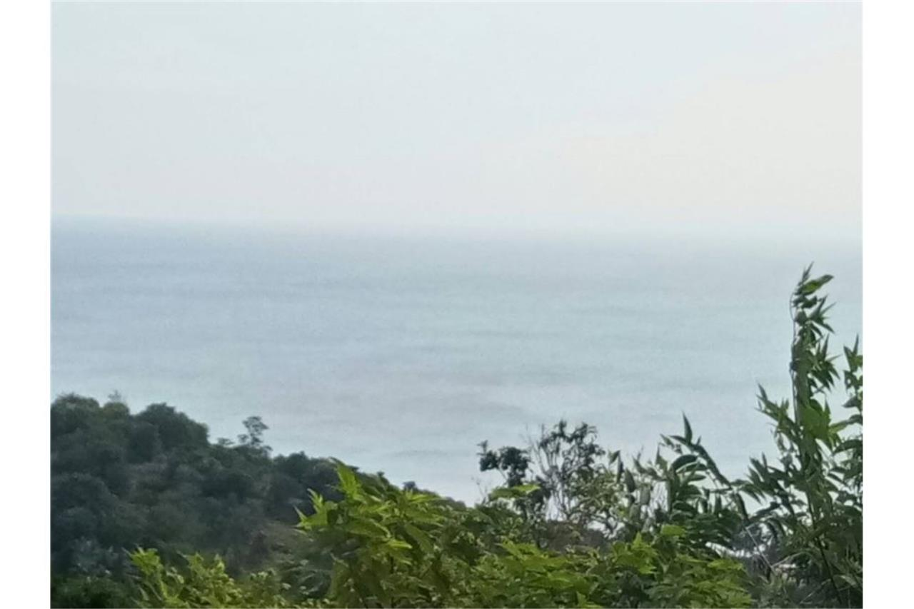 RE/MAX Island Real Estate Agency's Land for sale in Choeng Mon, Koh Samui 3