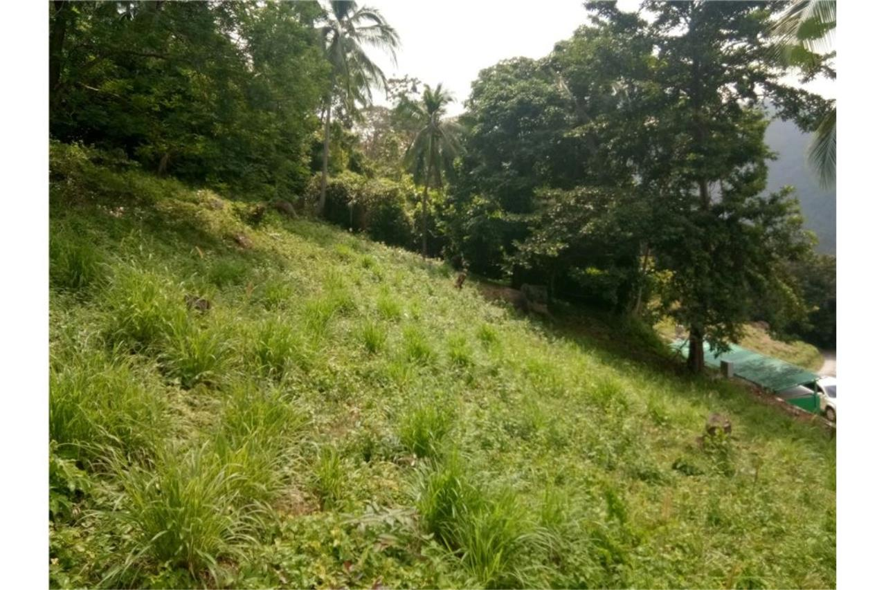 RE/MAX Island Real Estate Agency's Sea view land for sale in Nathon 5