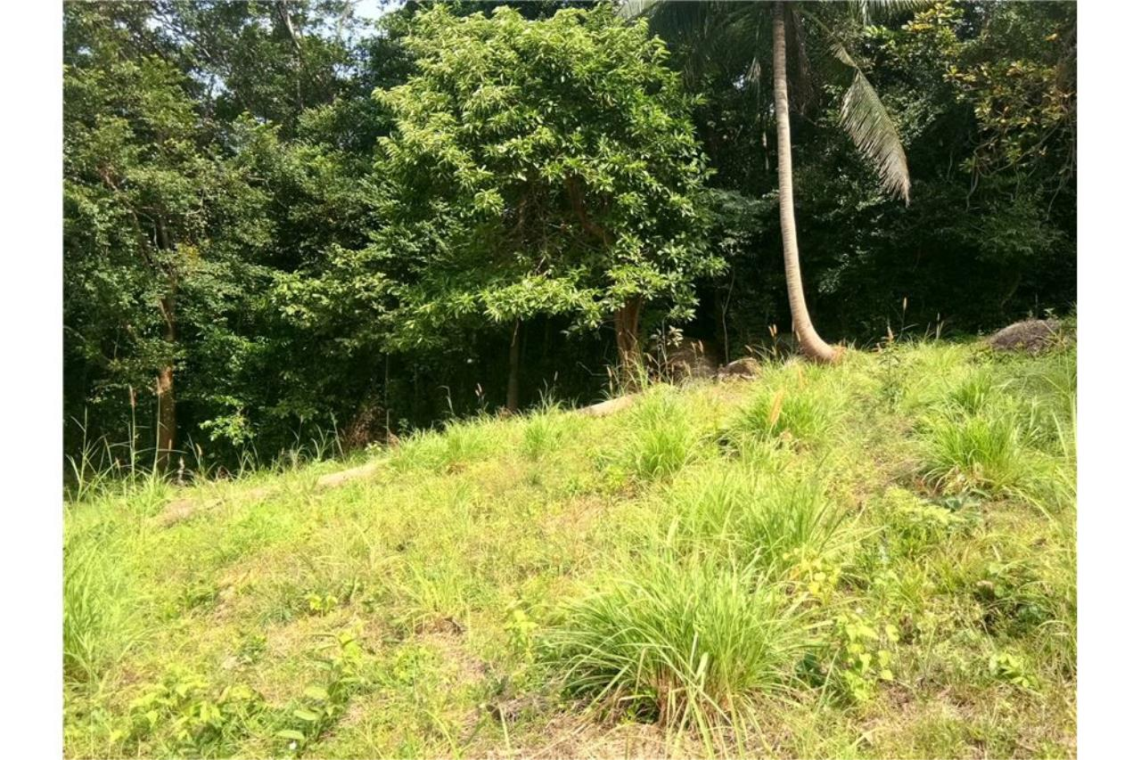 RE/MAX Island Real Estate Agency's Sea view land for sale in Nathon 8