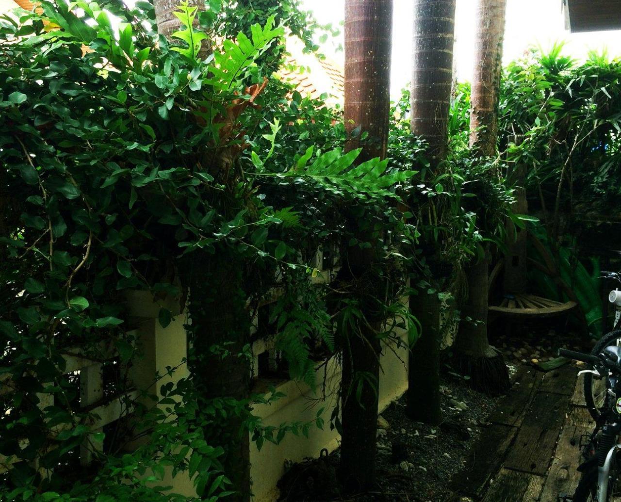 REAL Phuket  Agency's Peaceful 3-Bedroom House near Naiyang Beach & Airport 4