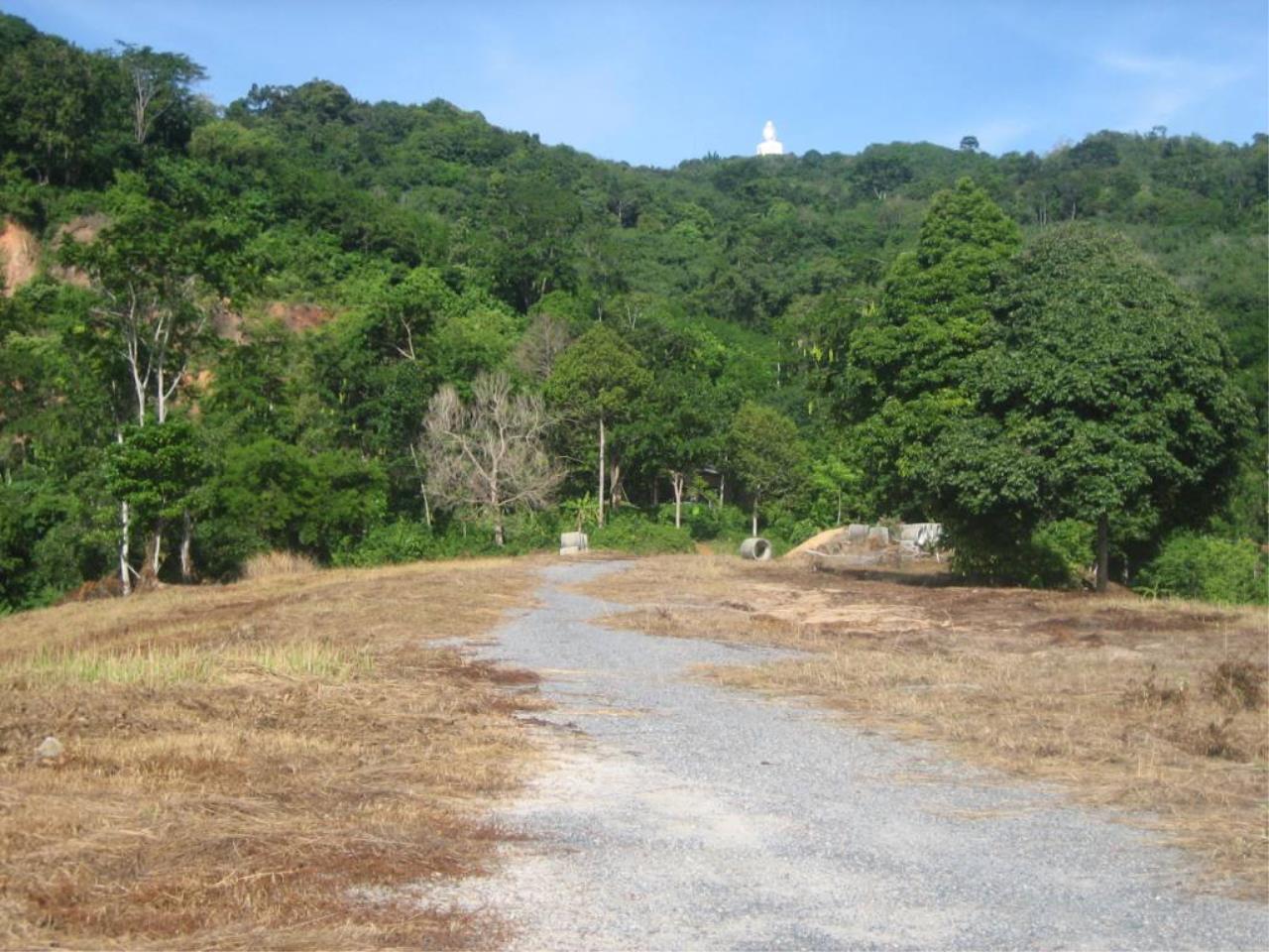 REAL Phuket  Agency's Chalong Hillside Land Plot of 14.6 Rai on Big Buddha Mountain 6