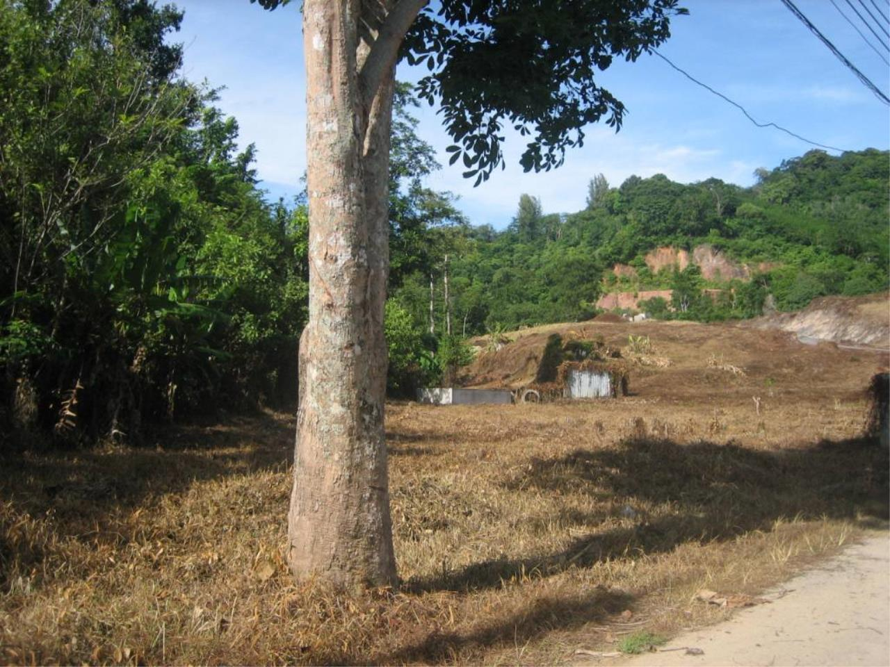 REAL Phuket  Agency's Chalong Hillside Land Plot of 14.6 Rai on Big Buddha Mountain 3
