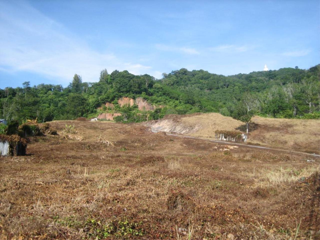 REAL Phuket  Agency's Chalong Hillside Land Plot of 14.6 Rai on Big Buddha Mountain 1