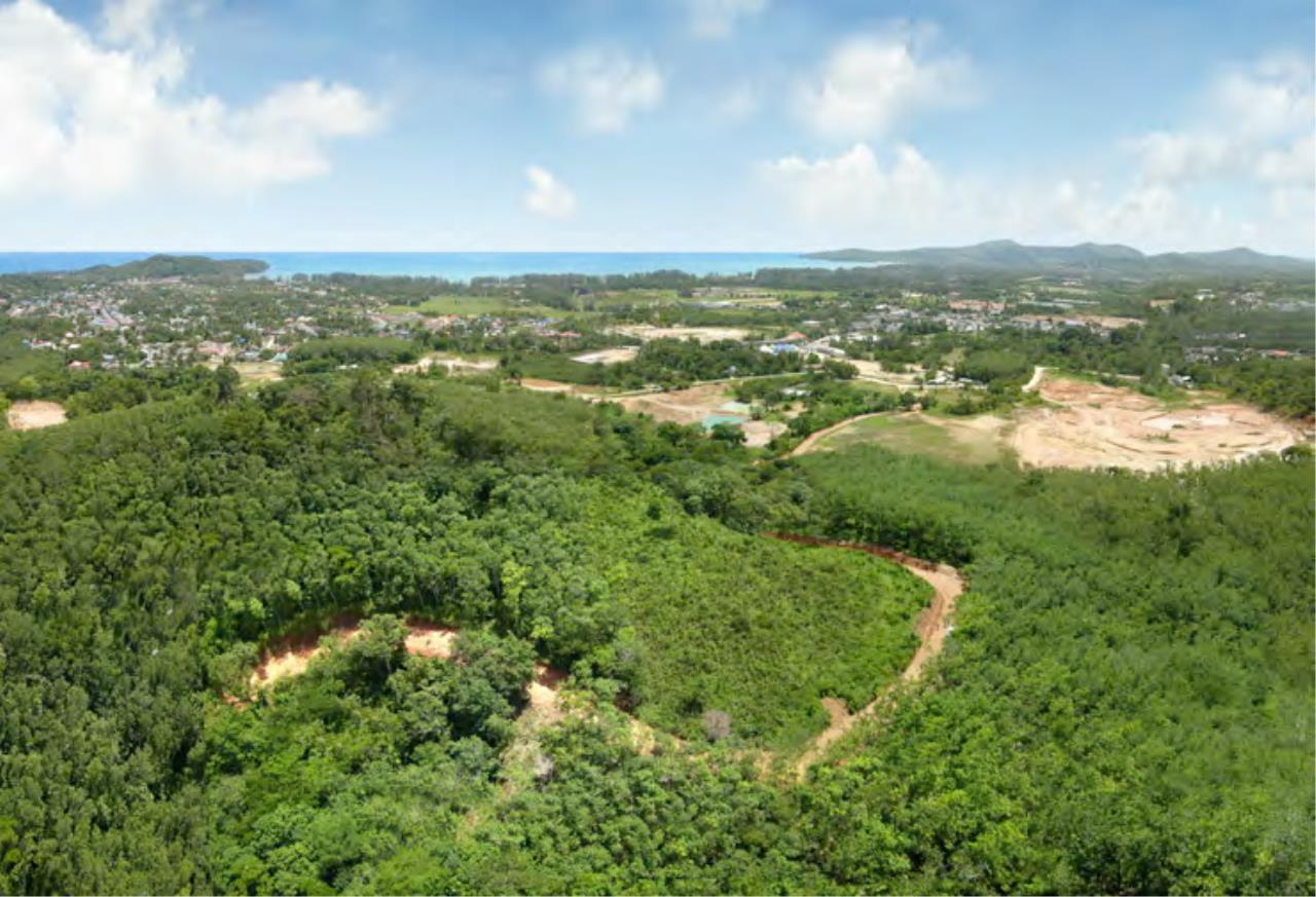 REAL Phuket  Agency's 6+ Rai Hillside Land in Bang Tao 4
