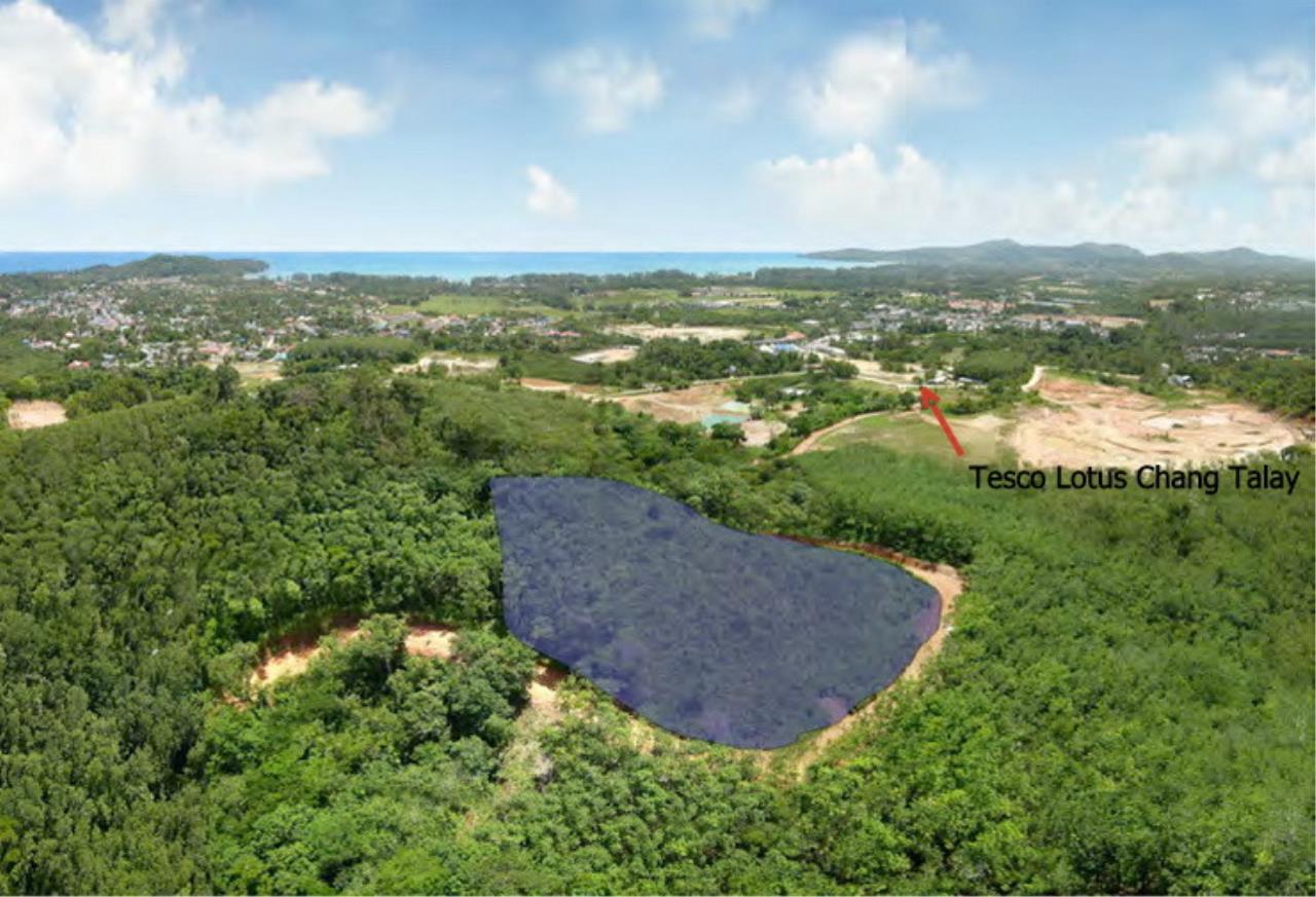 REAL Phuket  Agency's 6+ Rai Hillside Land in Bang Tao 1