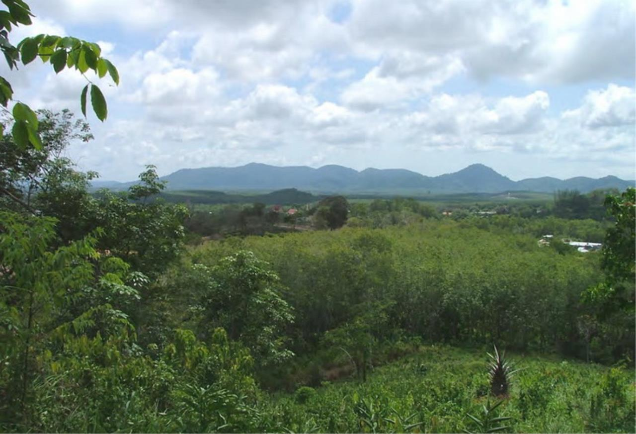REAL Phuket  Agency's 6+ Rai Hillside Land in Bang Tao 6