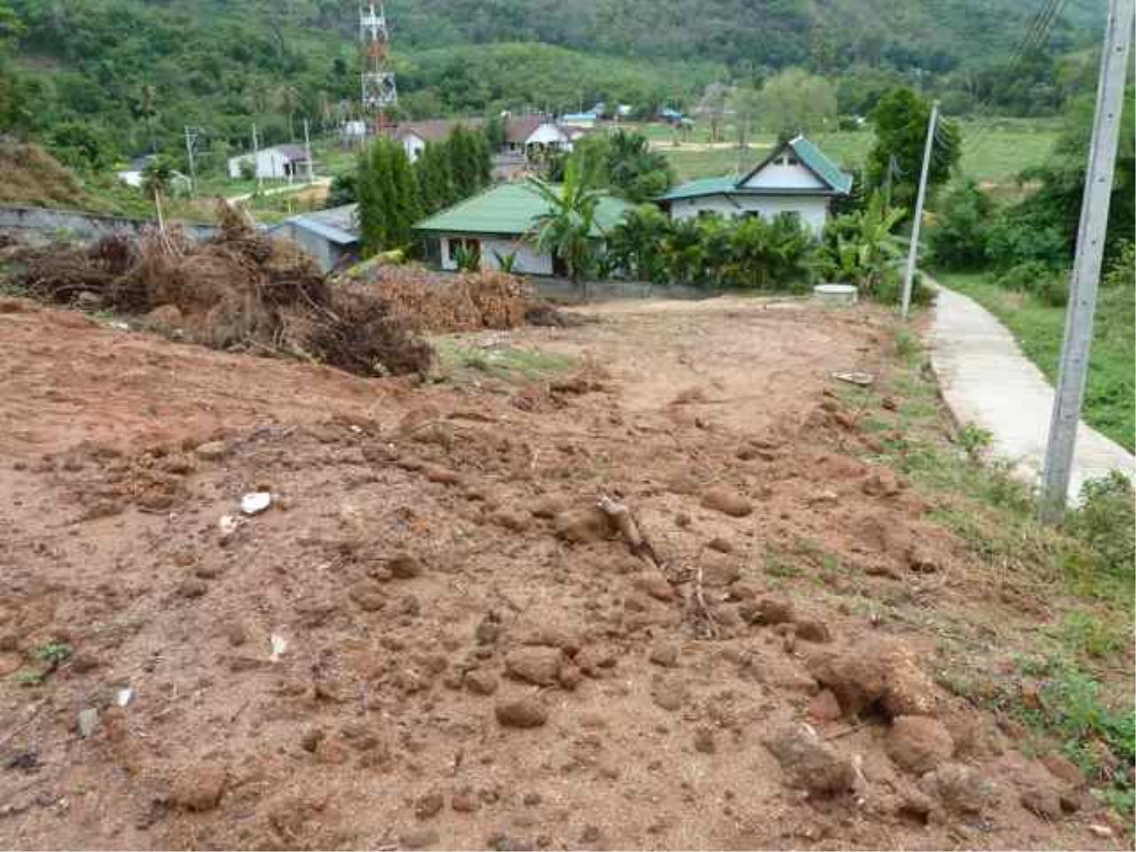 REAL Phuket  Agency's Nai Harn - Hillside Land Plot of 1 Rai - ideal for Villa Project 2