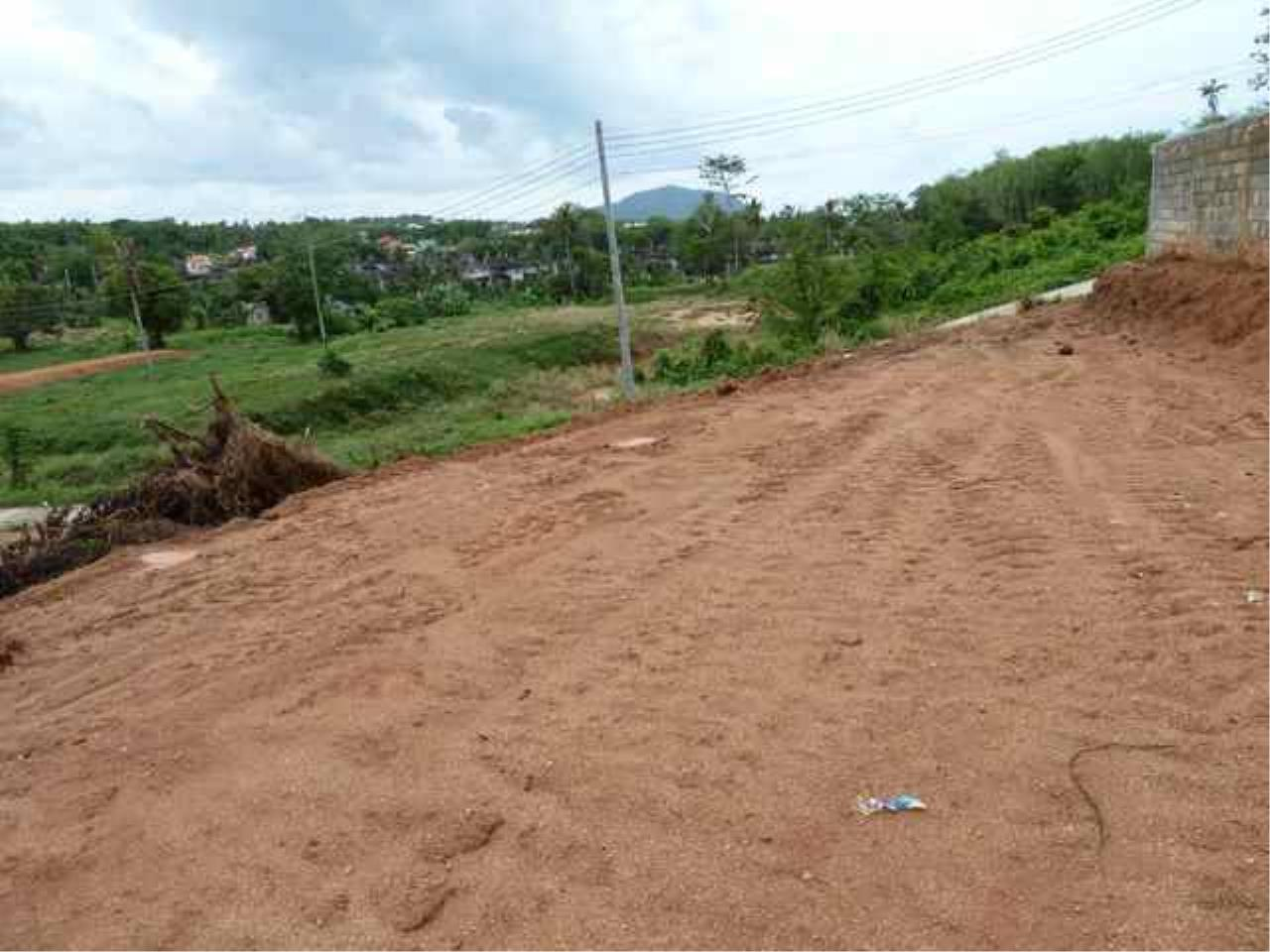 REAL Phuket  Agency's Nai Harn - Hillside Land Plot of 1 Rai - ideal for Villa Project 4