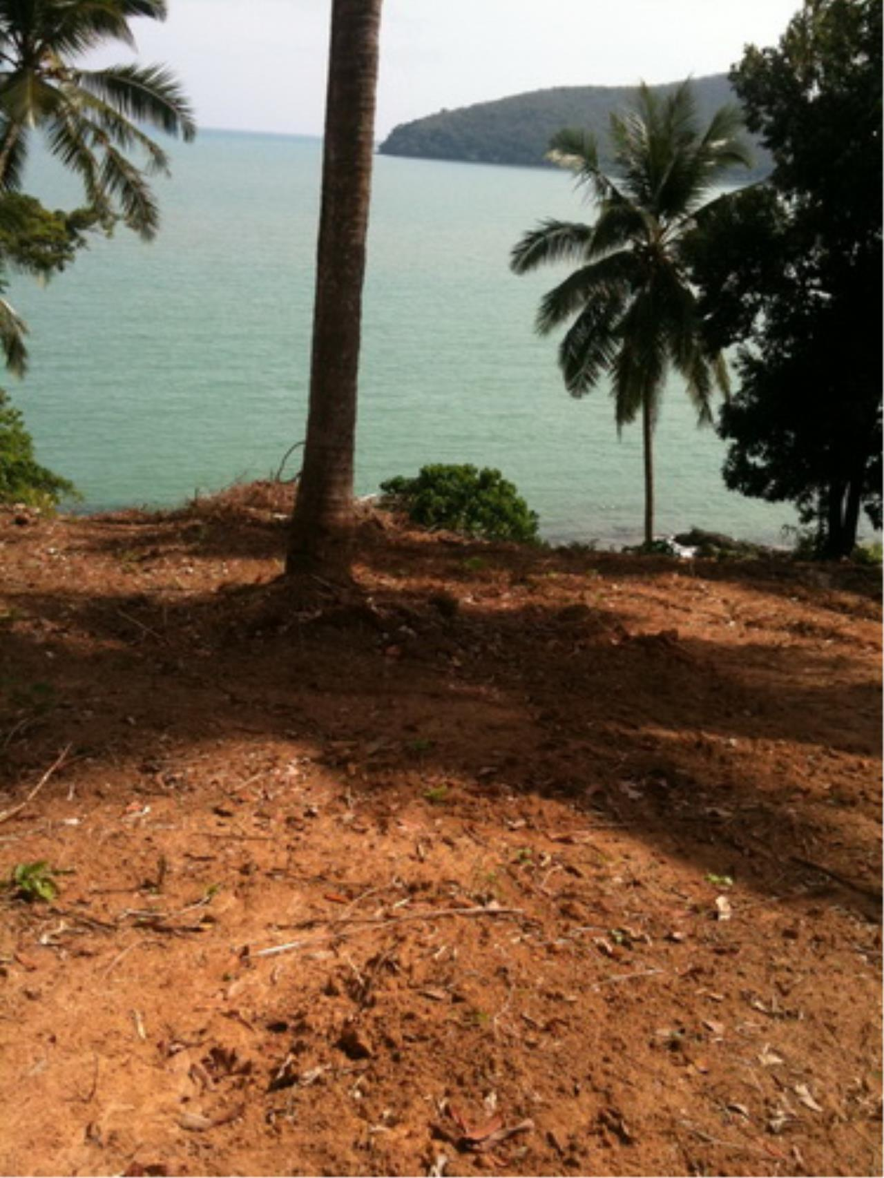 REAL Phuket  Agency's Coconut Island South Cape - 20 Rai Oceanfront Headland 21