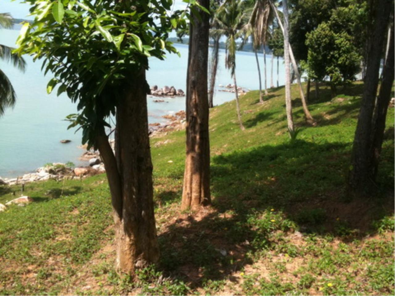 REAL Phuket  Agency's Coconut Island South Cape - 20 Rai Oceanfront Headland 9