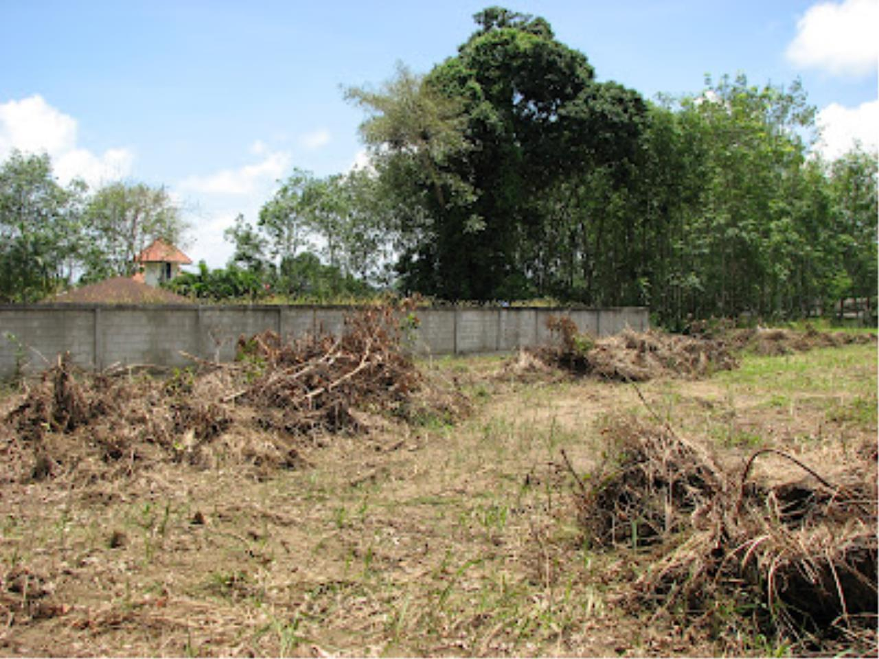 REAL Phuket  Agency's Beautiful Land Plot of 1.5 Rai for Sale in Pasak Area 2