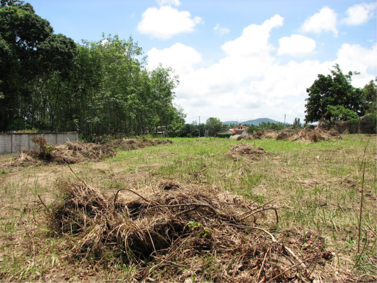 REAL Phuket  Agency's Beautiful Land Plot of 1.5 Rai for Sale in Pasak Area 3