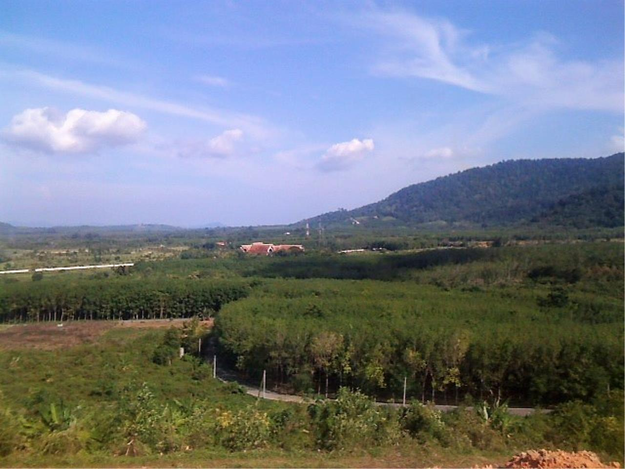 REAL Phuket  Agency's 6 Rai of Seaview Land near Mission Hills Golf Course - only THB 3.5m per Rai 2