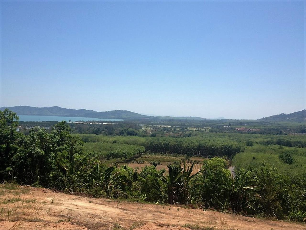 REAL Phuket  Agency's 6 Rai of Seaview Land near Mission Hills Golf Course - only THB 3.5m per Rai 6