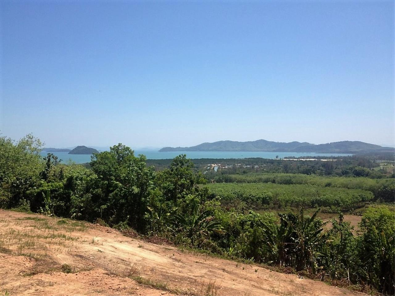 REAL Phuket  Agency's 6 Rai of Seaview Land near Mission Hills Golf Course - only THB 3.5m per Rai 1