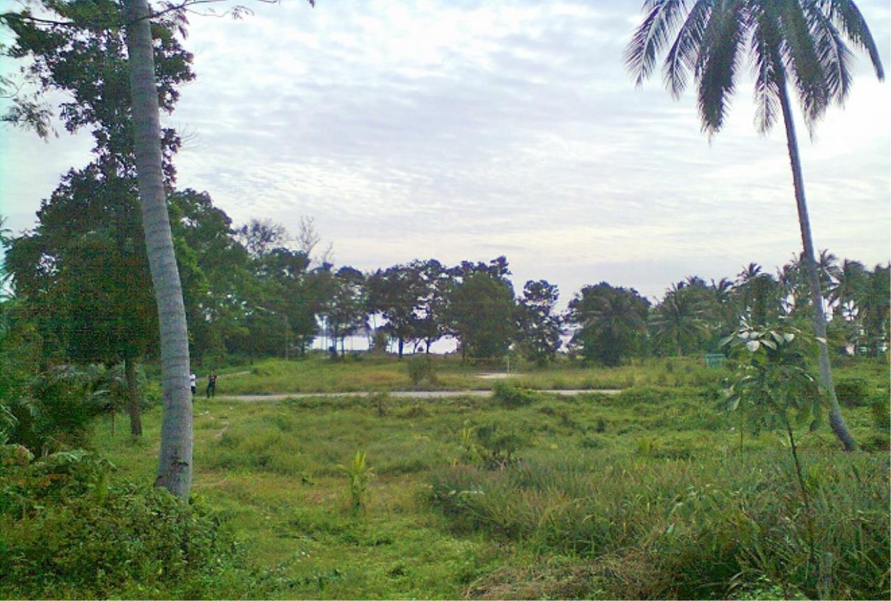 REAL Phuket  Agency's 1009 Rai near Oceanfront in Phang Nga 2