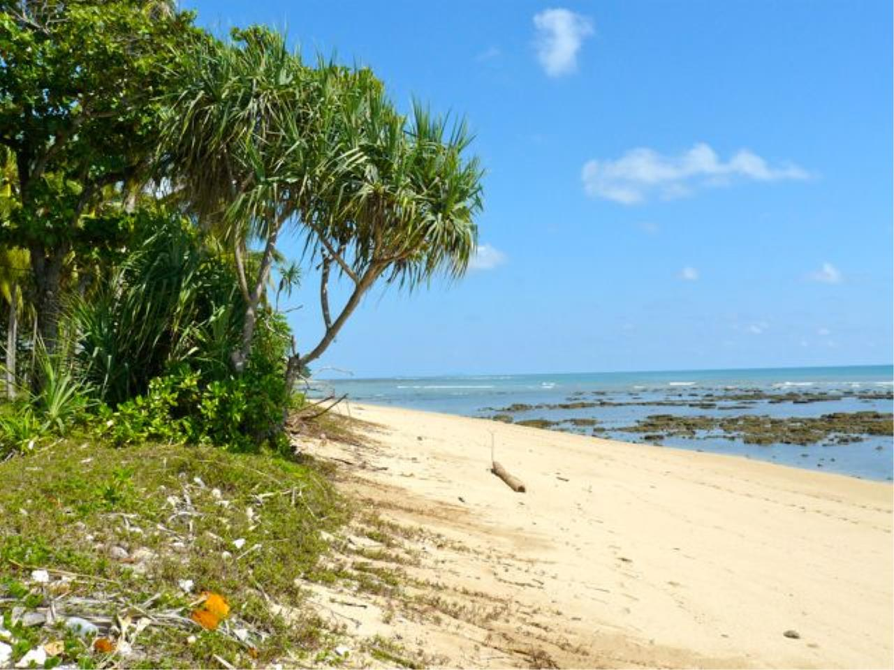 REAL Phuket  Agency's Koh Lanta - 23 Rai Beachfront Land with 210 meter Beach Frontage 5