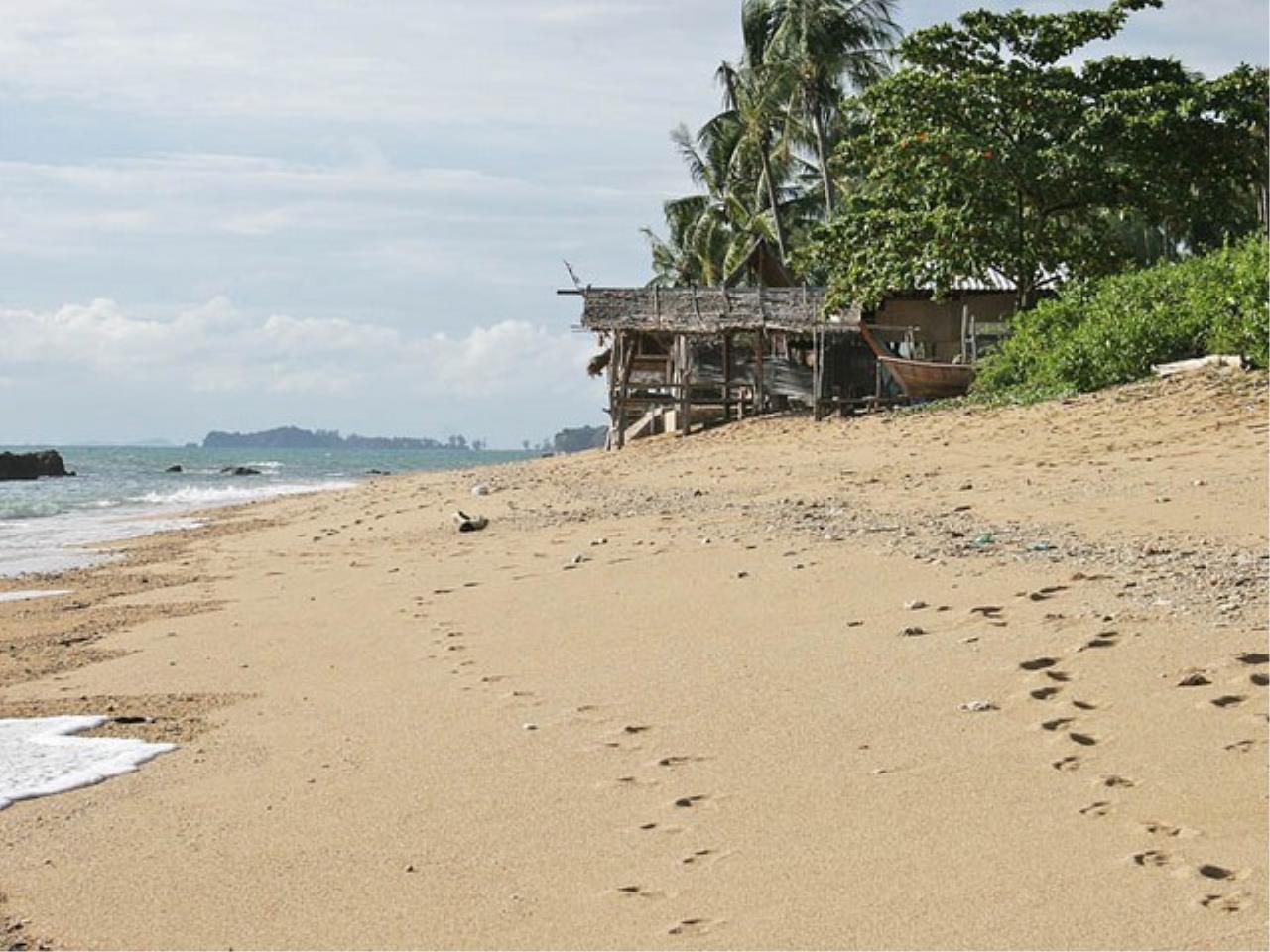 REAL Phuket  Agency's Koh Lanta - 23 Rai Beachfront Land with 210 meter Beach Frontage 6