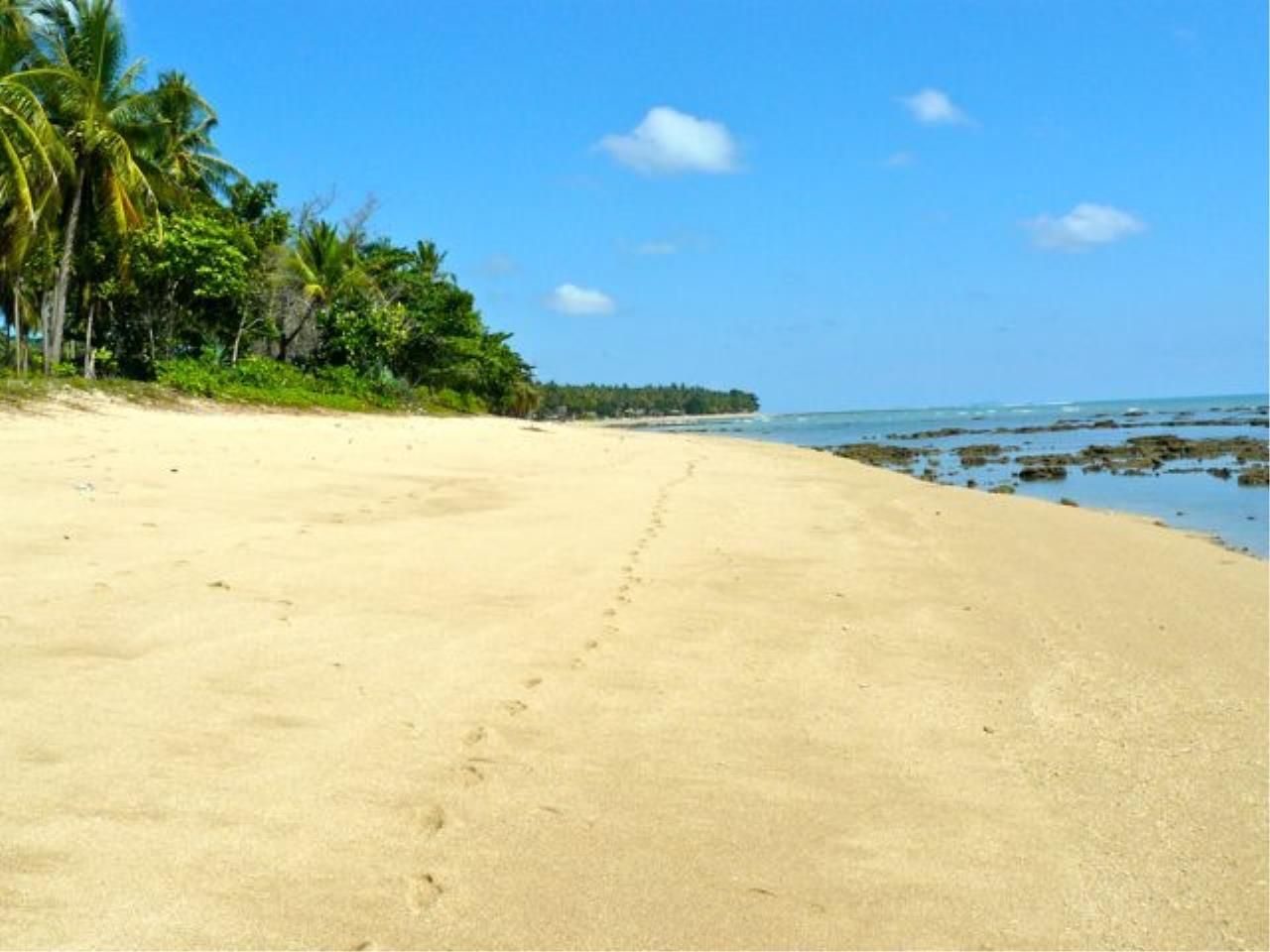 REAL Phuket  Agency's Koh Lanta - 23 Rai Beachfront Land with 210 meter Beach Frontage 1