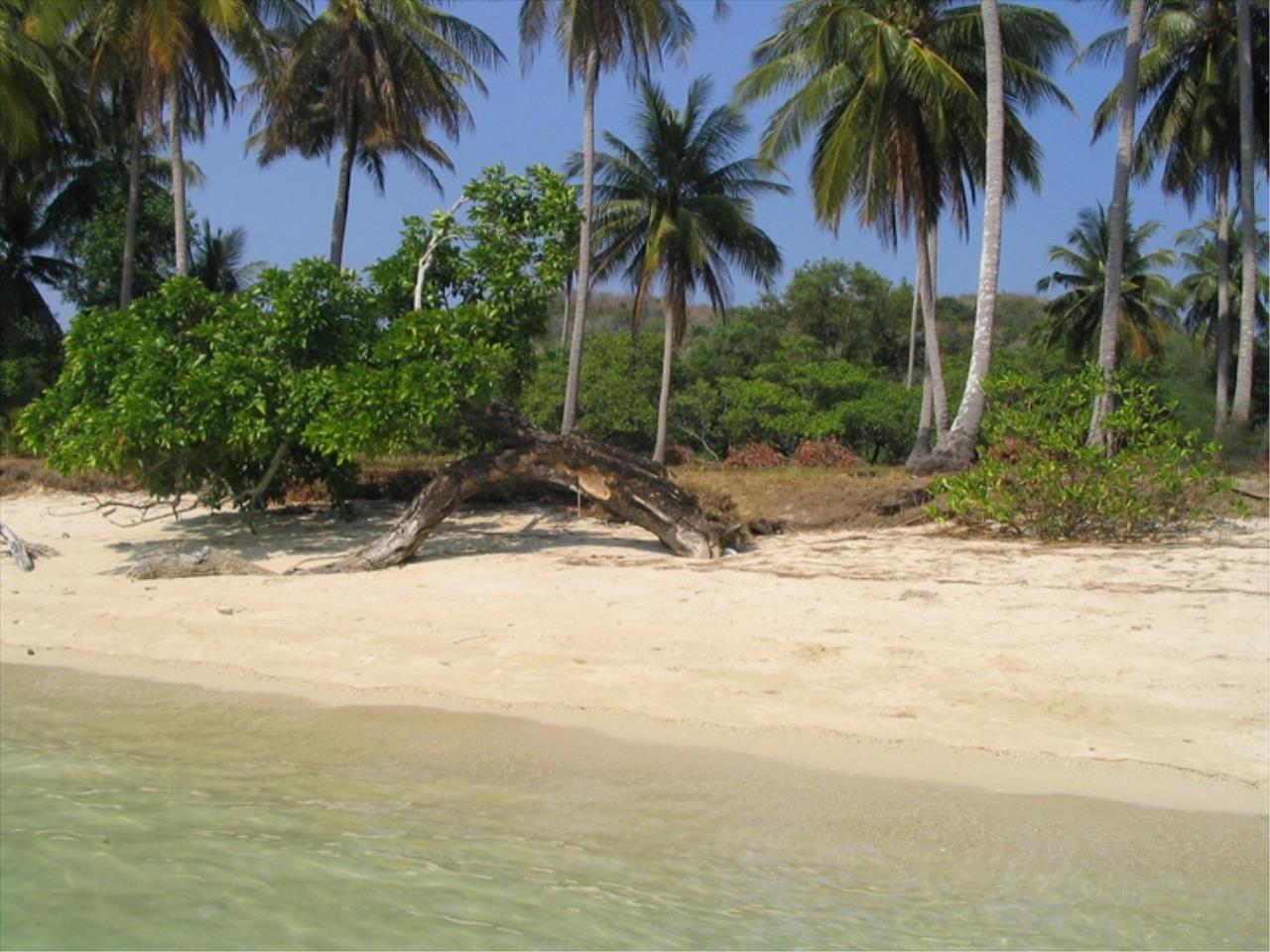 REAL Phuket  Agency's Naka Island - 2 Rai of Pristine Beachfront Land 8