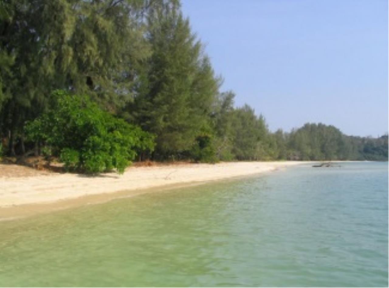 REAL Phuket  Agency's Naka Island - 2 Rai of Pristine Beachfront Land 9
