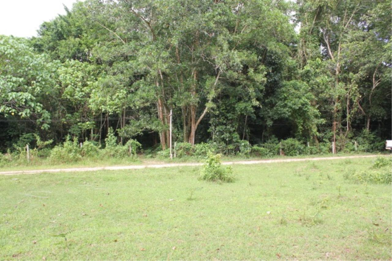 REAL Phuket  Agency's Beachside Land For Sale at Kheuk Kuk Beach, Khao Lak, Phang Nga 6