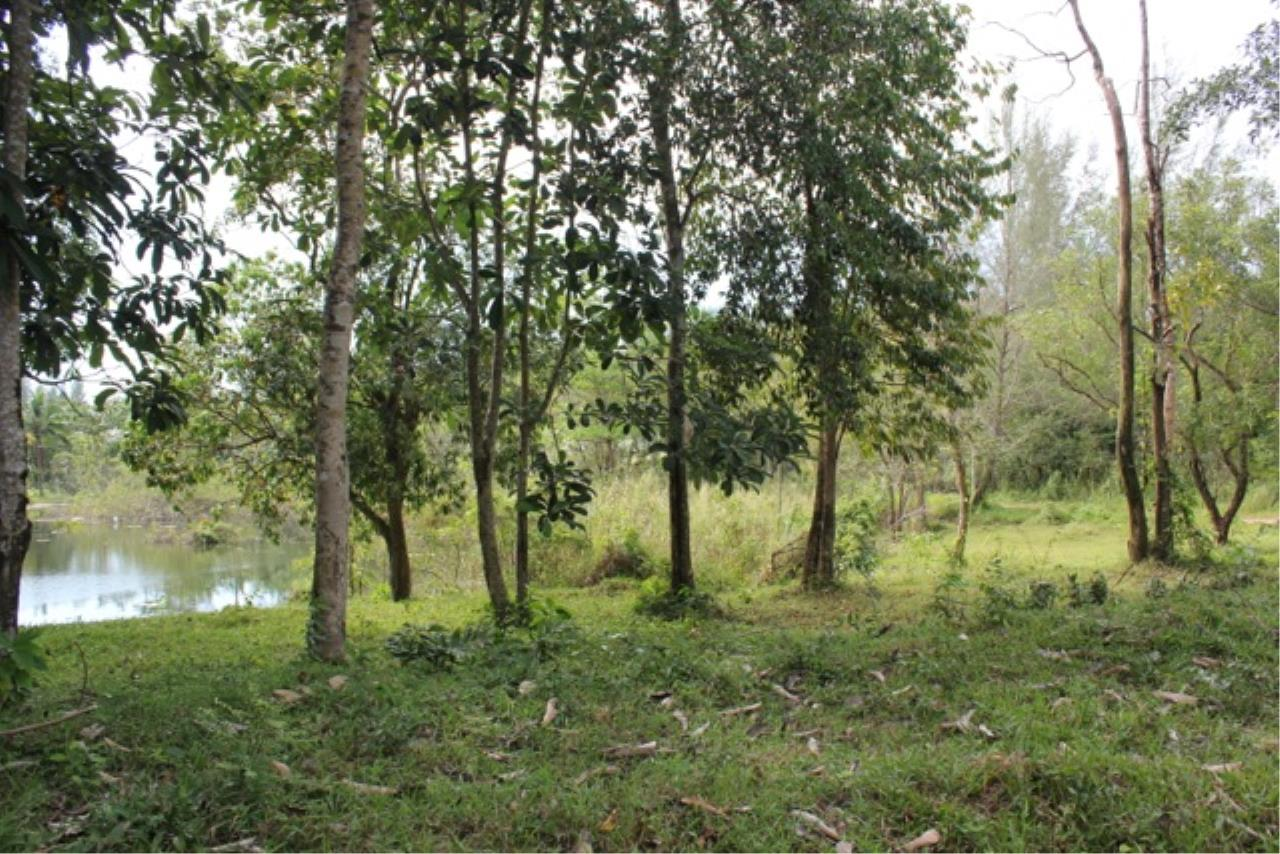 REAL Phuket  Agency's Beachside Land For Sale at Kheuk Kuk Beach, Khao Lak, Phang Nga 11