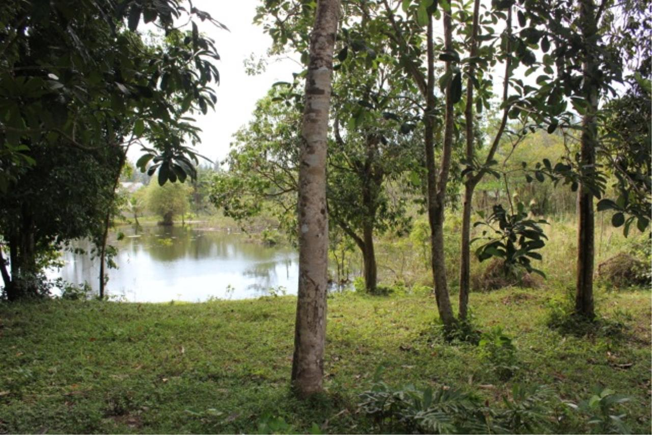 REAL Phuket  Agency's Beachside Land For Sale at Kheuk Kuk Beach, Khao Lak, Phang Nga 1