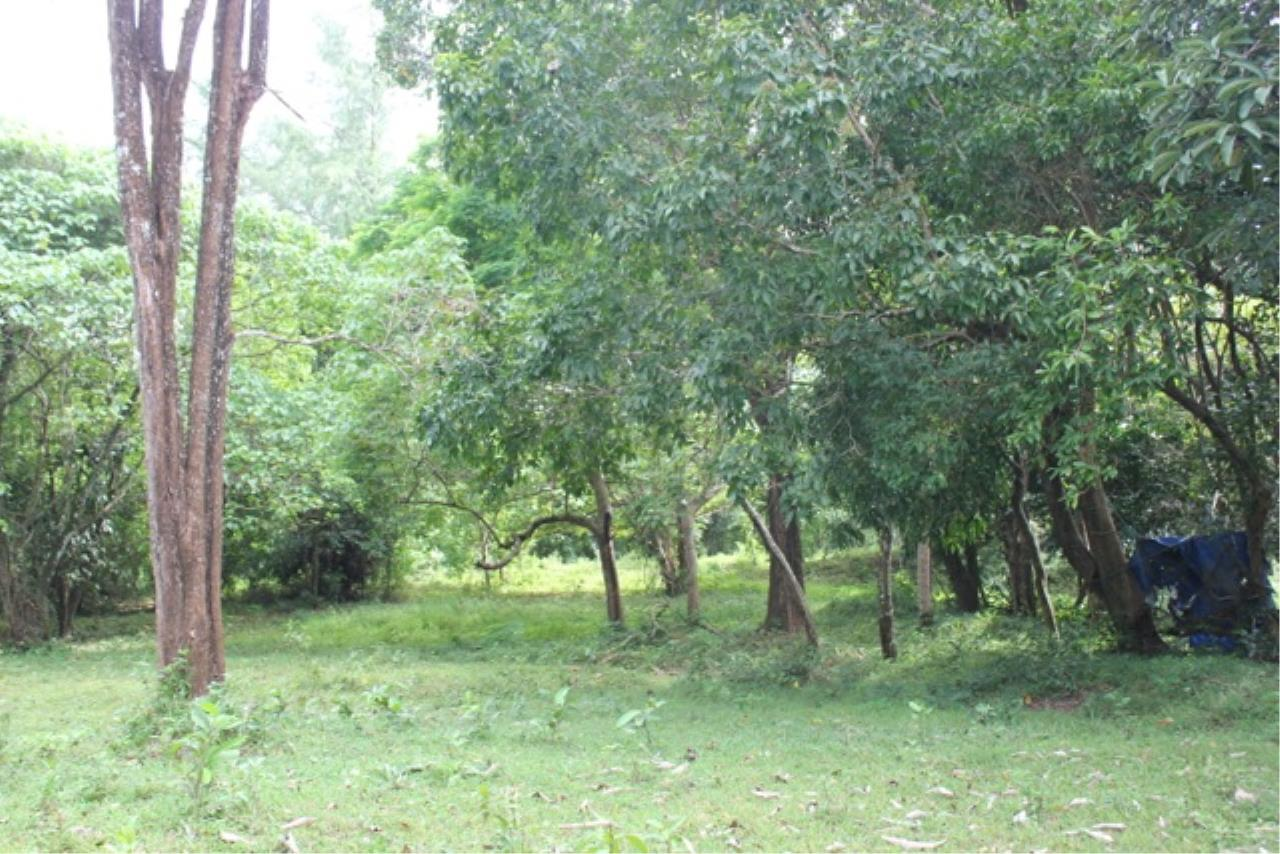 REAL Phuket  Agency's Beachside Land For Sale at Kheuk Kuk Beach, Khao Lak, Phang Nga 12
