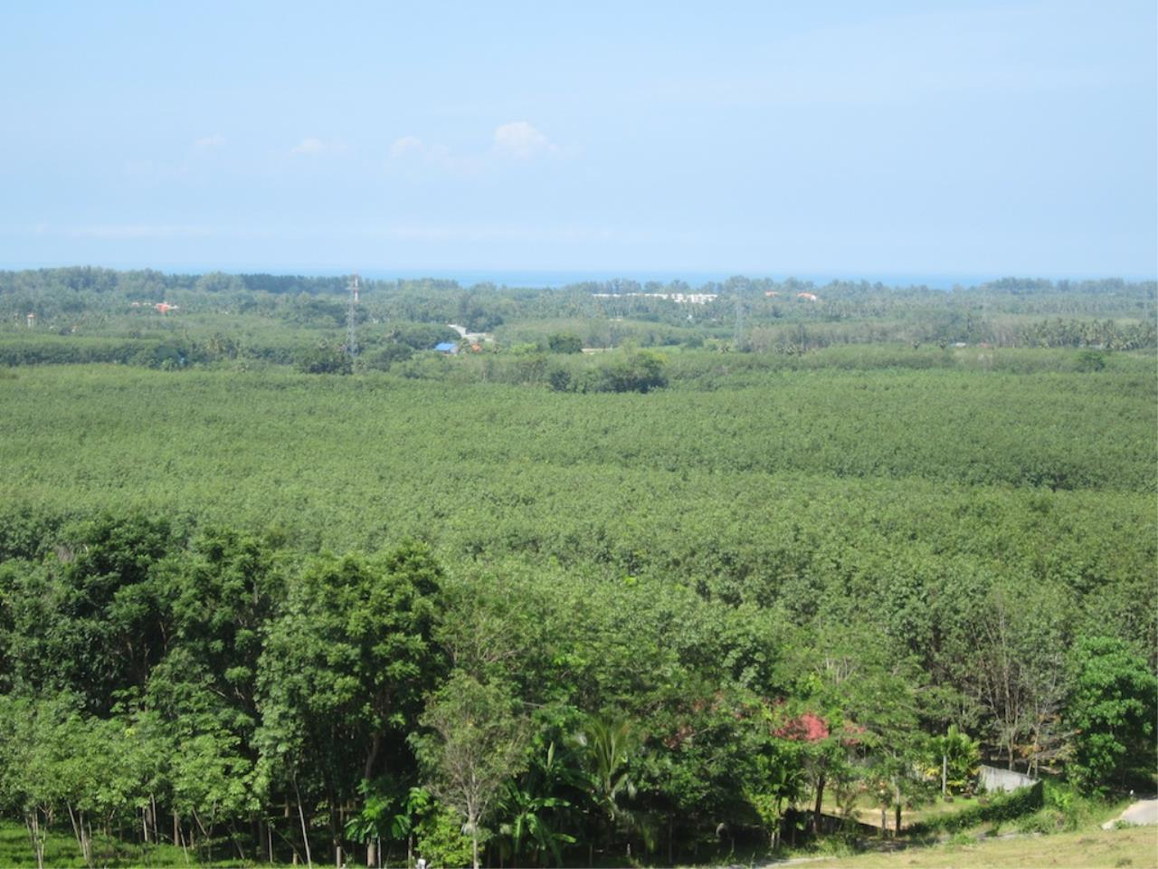 REAL Phuket  Agency's Mai Khao 6+ Rai of Land with Distant Sea Views 1