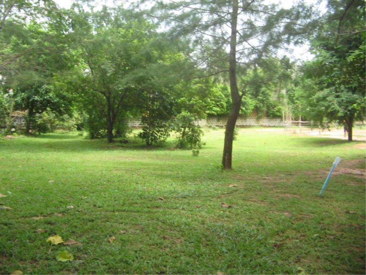 REAL Phuket  Agency's 4 Rai Flat Land in Layan - Great Value! 6