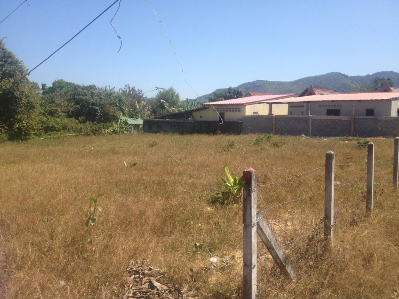 REAL Phuket  Agency's 800 Sqm Flat Land for Sale in Bang Jo 1