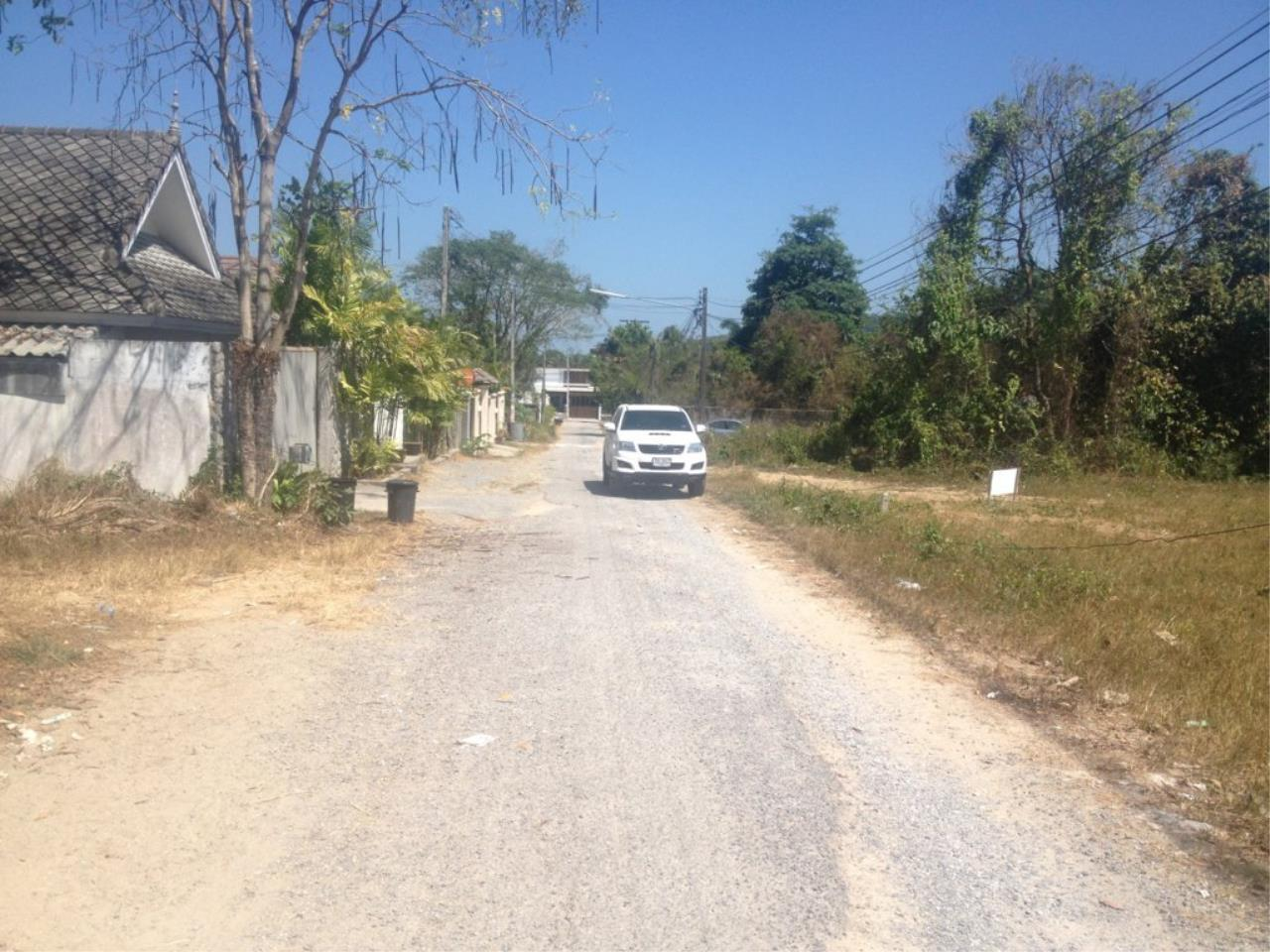 REAL Phuket  Agency's 800 Sqm Flat Land for Sale in Bang Jo 2