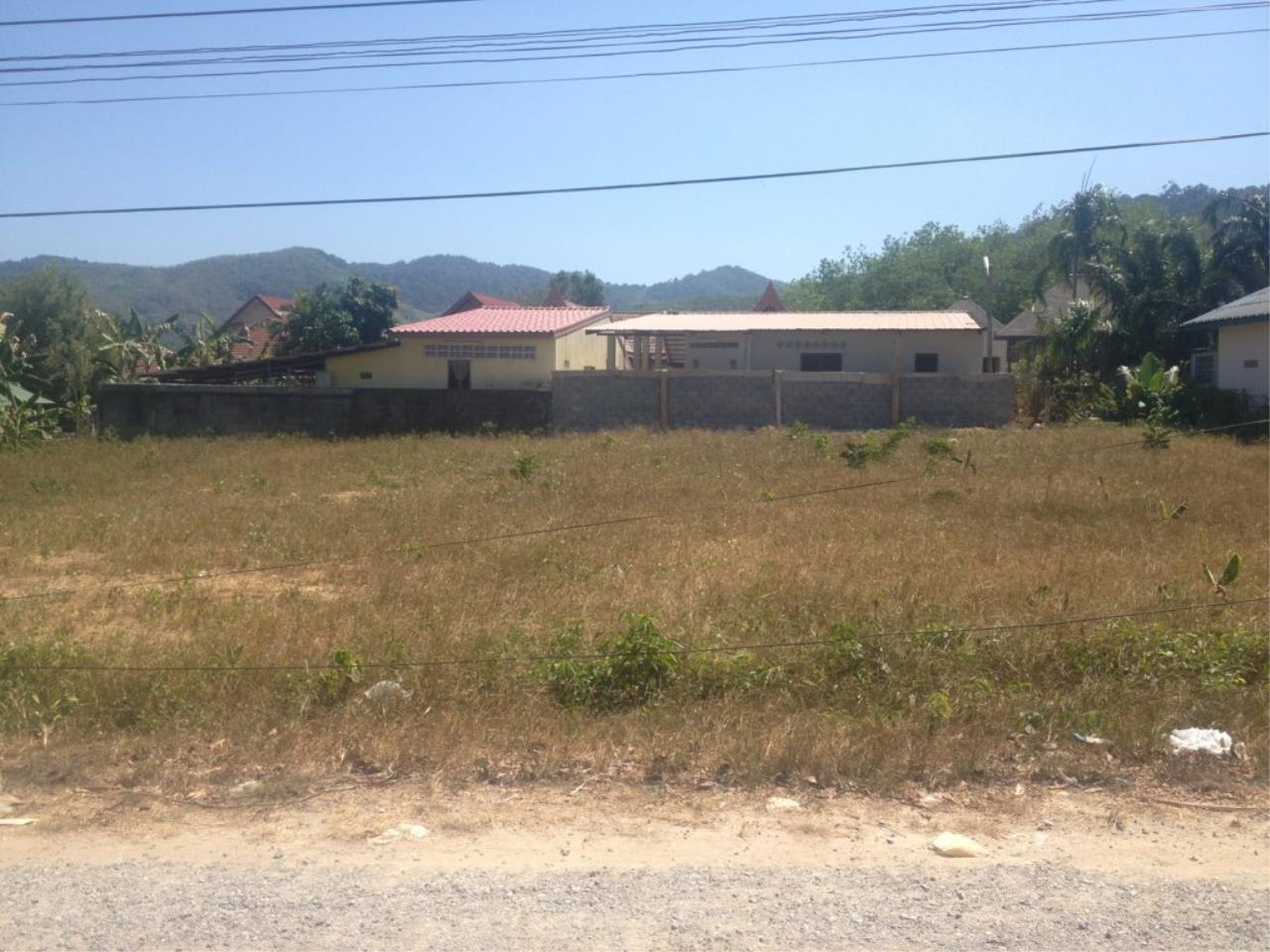 REAL Phuket  Agency's 800 Sqm Flat Land for Sale in Bang Jo 3